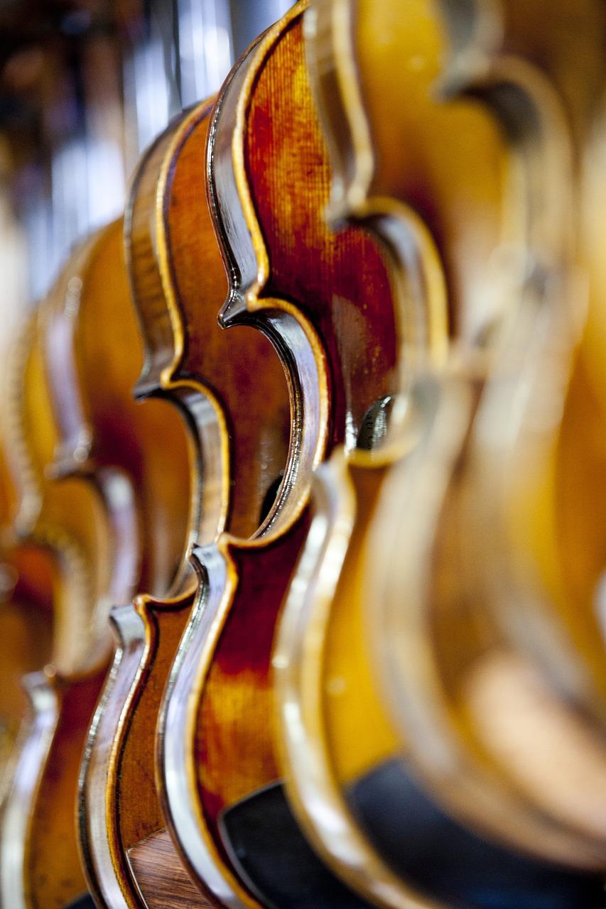 violin, music, instrument